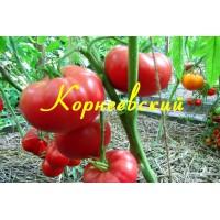 Корнеевский